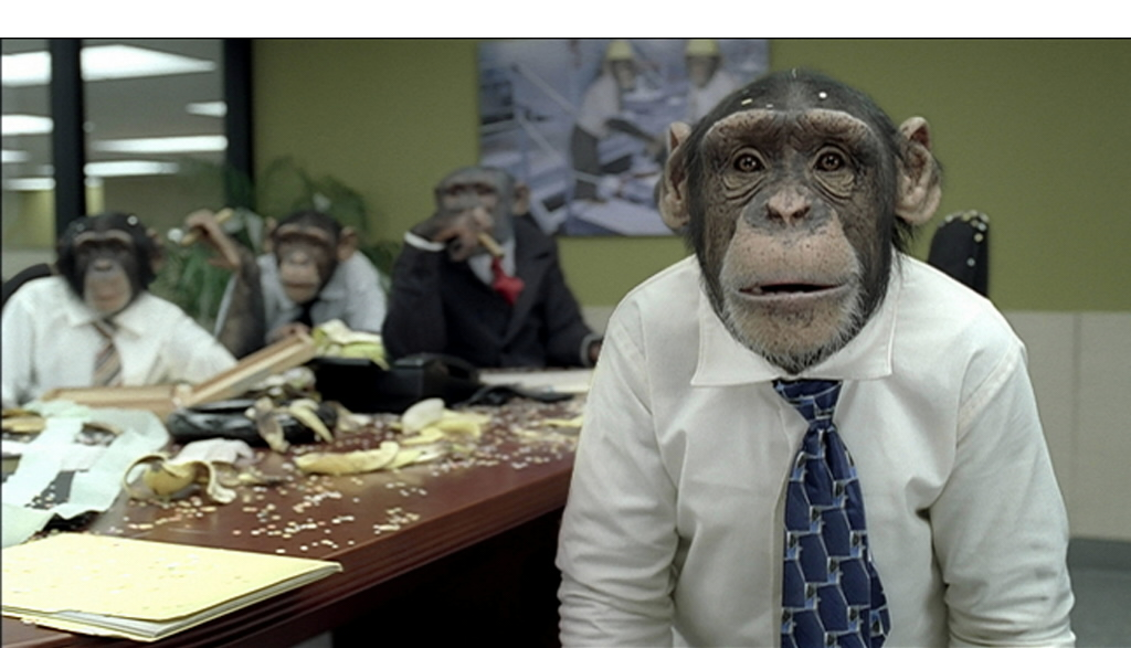 meeting-monkeys.jpg