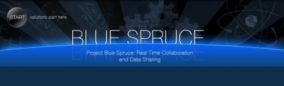 blue spruce header