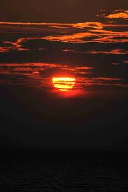 netinsight sunset